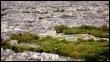 Vue aérienne du jardin du Luxembourg à Paris, le 1er mai 2008 (© AFP - Thomas Coex)