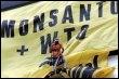 Manifestation de Greenpeace aux Philippines contre le maïs Monsanto en 2003 (© AFP/Archives - Jay Directo)