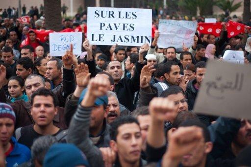 """Un manifestant tient une pancarte """"Sur les pavés, le jasmin"""", le20 janvier 2011 à Tunis (©  - Martin Bureau)"""